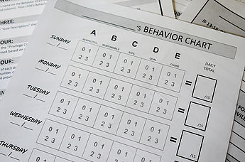 Behavior Chart System
